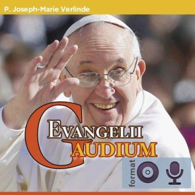 La joie de l'Evangile Evangelii Gaudium